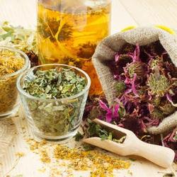 Plantes en phytothérapie