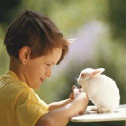 Garçon avec un lapin