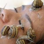 Bave d'escargot sur le visage