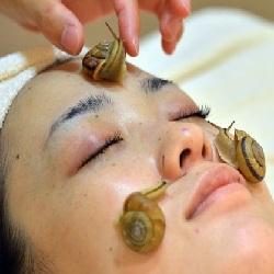 Escargots sur le visage