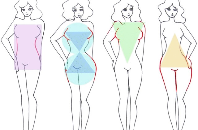 Morphologie féminine