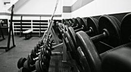 Etagère d'altères dans une salle de sport